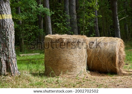Country landscape with straw stack. High quality photo Royalty-Free Stock Photo #2002702502