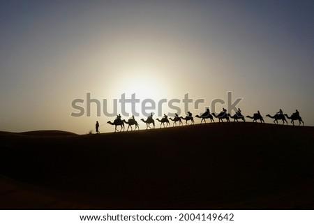 Camel caravan on the dune of Erg Chebbi at Morocco Royalty-Free Stock Photo #2004149642
