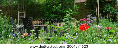 Wild herb and field flowers  English cottage style garden picture. Gardening concept of a rural garden. good for insects like bees en butterflies. nice rural backyard.