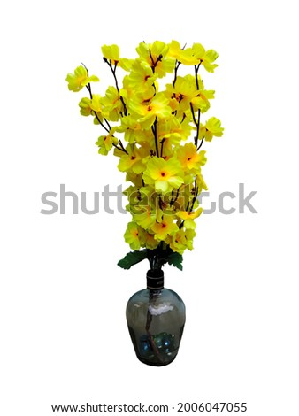 yellow colour flowers.jpeg most beautiful flowers