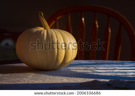 An early morning picture of a white pumpkin that is sitting on a table with a white tablecloth.  There are long shadows, soft light, and a chair in the background.
