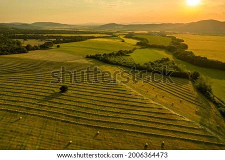 Fields of freshly cut grass prepared for hay production. Aerial view of a cultivated farmland in Slovakia.  Royalty-Free Stock Photo #2006364473