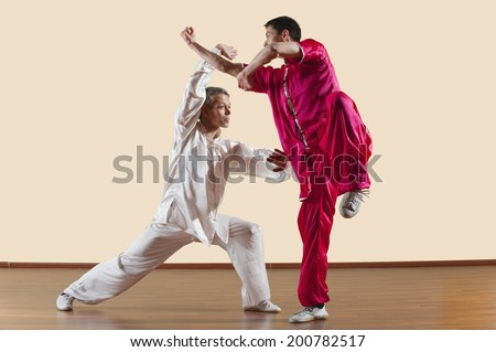 Kung Fu, Changquan, Duilian, Long Fist Style, Two men doing kung-fu moves Royalty-Free Stock Photo #200782517