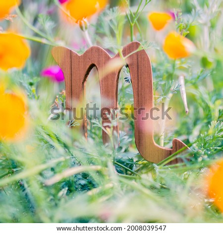Close up of the Scorpio astrological sing in a bed of flowers