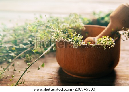 Herb capsella in mortar with pestle on wooden background, side view, medicinal herb #200945300
