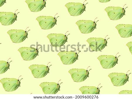 Green butterfly moth isometric seamless pattern on a pastel yellow background. Fresh summer or baby kid cartoon natural concept poster. Minimal flat lay eco wallpaper.