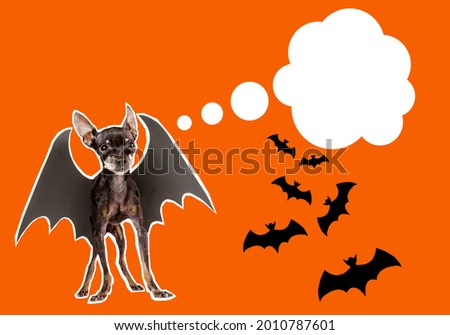 Halloween elements decor on orange background. Place for an inscription next to symbols of halloween. Halloween party invitation banner. All Hallows' Eve holiday. Small dog with bat wings