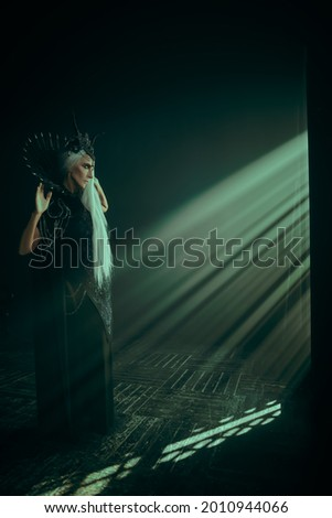 Fantasy World. A beautiful majestic black queen, a witch in a rich headdress and a rich black dress, stands in the rays of light in a dark castle. Full length portrait. Royalty-Free Stock Photo #2010944066