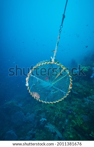 Under the sea, fish trap Royalty-Free Stock Photo #2011381676