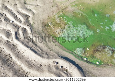 Turquoise abstraction of sand and small algae