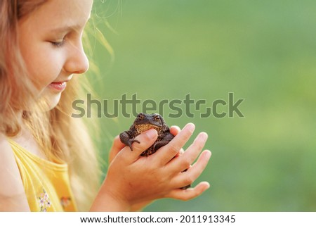 little curious girl 5 years old, holding large earth toad, frog on her hand, while in fresh air. The child looks at the amphibious animal with curiosity and interest. The baby wants to kiss the frog.