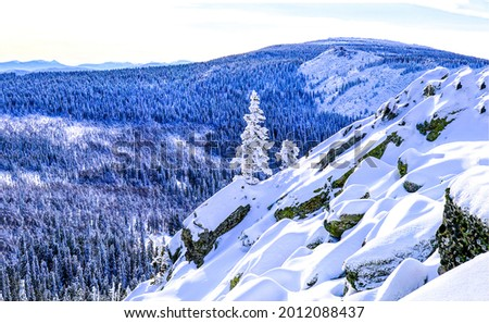 Snow in mountain forests in winter. Snowy mountains. Mountain snow landscape Royalty-Free Stock Photo #2012088437