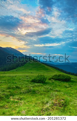 Carpathian mountains summer  sunset landscape with blue sky and green meadow #201281372