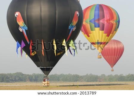 Hot air balloon festival 35. #2013789