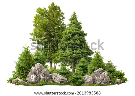 Cutout rock surrounded by fir trees. Garden design isolated on white background. Decorative shrub for landscaping. High quality clipping mask for professionnal composition. Stones in the forest. Royalty-Free Stock Photo #2013983588
