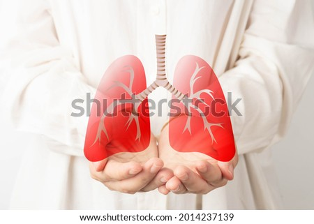 Human hands holding lung organ symbol. Awareness of lung cancer, pneumonia, asthma, COPD, pulmonary hypertension, world no tobacco day and eco air pollution. Respiratory and chest concept. Royalty-Free Stock Photo #2014237139