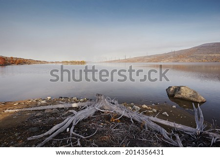 Dead dry snags and trees on the sand. Once there was a tundra here, after acid rains died. Ecological problems and structures from the plant. Industrial landscape against a cloudy gloomy sky Royalty-Free Stock Photo #2014356431