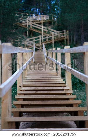 Long wooden stairs in forest. High quality photo Royalty-Free Stock Photo #2016291959