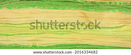 Silk fabric, large yellow-green stripes separated by a strip of emerald gold, pattern background texture, ornament