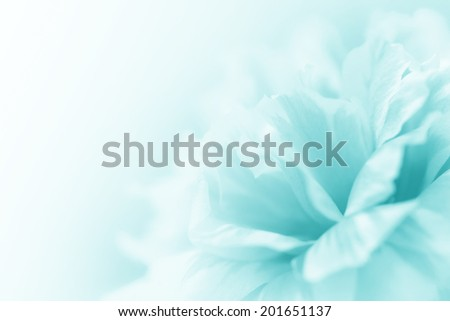 beautiful flowers made with color filters abstract #201651137
