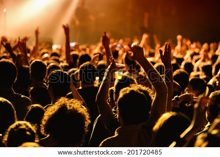 People have fun in a concert Royalty-Free Stock Photo #201720485