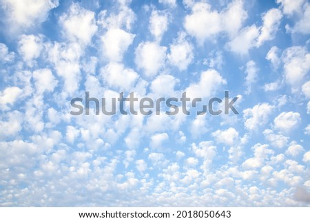 Sky with multitude white small clouds , may be used as background. Cloudscape Royalty-Free Stock Photo #2018050643