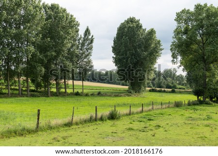 Agriculture fields, trees and green lawns at the Flemish countryside  Royalty-Free Stock Photo #2018166176