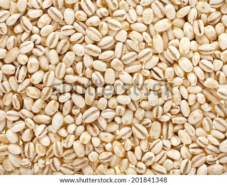Pearl Barley Surface Texture Background #201841348