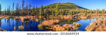 Panorama of the swampy area near the hill. Swampy area. Swamp in wilderness. Marshland panorama Royalty-Free Stock Photo #2018684924