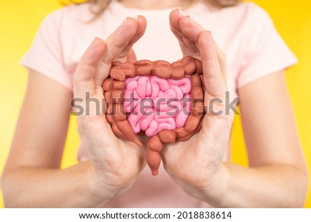 Human intestinal model. Gastrointestinal tract. Gastric tract health concept. Digestive health. Large and small intestine in hands of woman. Intestinal health. Blurred girl in background. Royalty-Free Stock Photo #2018838614