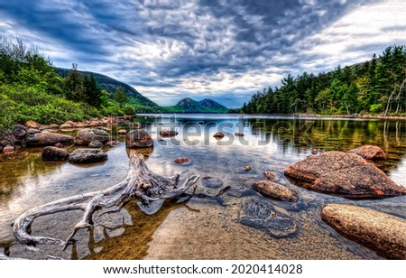 Calm water of the forest river. Clear calm water of river. River landscape. Calm water in river Royalty-Free Stock Photo #2020414028