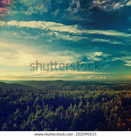 Carpathian mountains summer  retro sunset landscape with blue sky and green forest