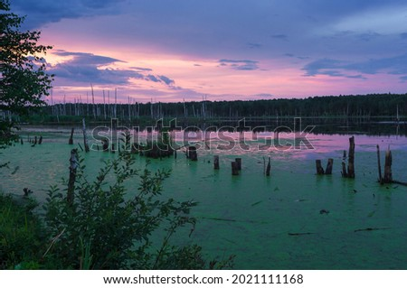 June, 2021. Dawn on the swamp in the Moscow region Royalty-Free Stock Photo #2021111168