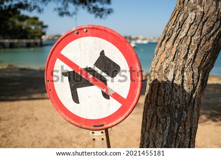 Round dog prohibition sign located near tree trunk on sunny day on beach near sea