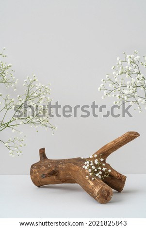 Wooden podium and gypsophila flowers on grey background mockup. Rough textured piece of wood for product advertising. Natural snag and white flowers. Eco spa and beauty display. Product presentation.  Royalty-Free Stock Photo #2021825843
