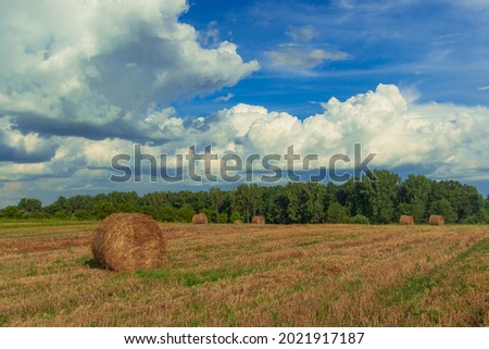 autumn harvest season time farmland field scenic view with haystack and background country side environment space  Royalty-Free Stock Photo #2021917187
