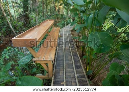 Wooden bridge walkway Bamboo bridge spanning to the garden in Thailand Royalty-Free Stock Photo #2023512974