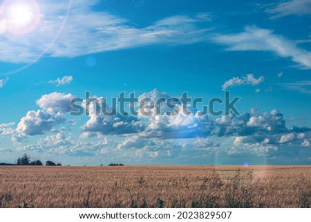 cumulus clouds in the blue sky above the earth Royalty-Free Stock Photo #2023829507