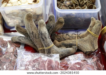 Velvet antler is a kind of antlers supplements. Royalty-Free Stock Photo #2024381450