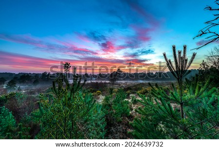 Misty dawn in the early morning. Early morning at dawn. SUnrise sky at dawn Royalty-Free Stock Photo #2024639732