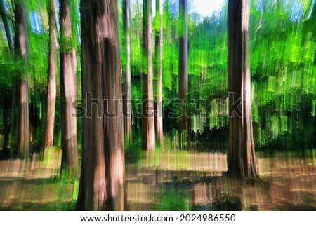 Intentional camera movement photography in a forest Royalty-Free Stock Photo #2024986550