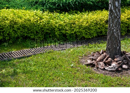grate drainage system on lawn with green grass and bushes in backyard garden with tree trunk bark and mulching, rainwater drainage system in park among plants lit by sunlight, nobody. Royalty-Free Stock Photo #2025369200