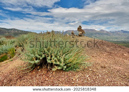 green shrubs growing on the red-yellow desert hills. mountain landscape Royalty-Free Stock Photo #2025818348