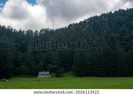 Khajjiar Mini switzerland of india, Dark landscape with view of devdar tree and house. Royalty-Free Stock Photo #2026113422