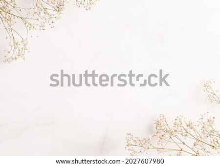 Gypsophila (baby breath flower) background. Frame for text made of dried white wedding flowers. Copy space. Pastel colors. Top view. Flat layout template. Card design. Royalty-Free Stock Photo #2027607980