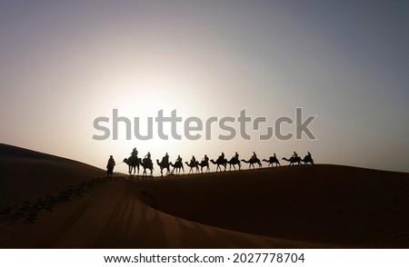 Camel caravan on the dune of Erg Chebbi at Morocco Royalty-Free Stock Photo #2027778704