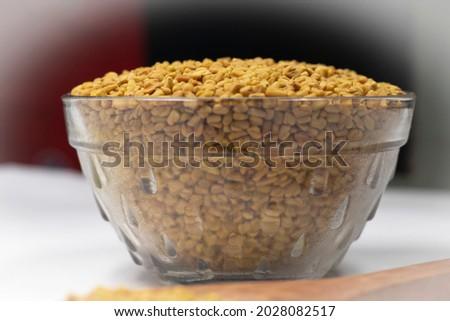 Fenugreek High resolution Stock Photo