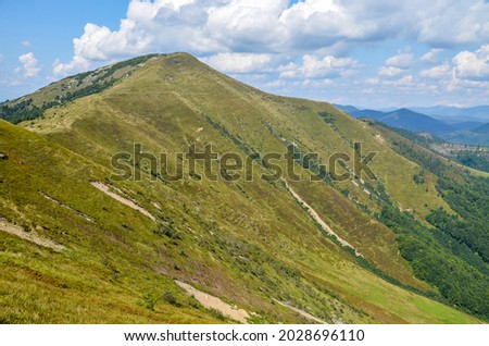 Colorful landscape of the mountain slope with multicolored grass overlooking the beautiful Carpathian mountains, Ukraine Royalty-Free Stock Photo #2028696110