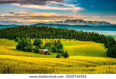 Farm on the edge of the forest. Forest land farm. Farm in forestland. Farm on forest edge Royalty-Free Stock Photo #2028766982