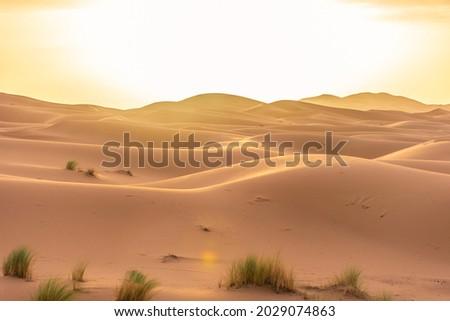 Beautiful landscape of the Sahara Desert, erg Chebbi, Merzouga, morocco Royalty-Free Stock Photo #2029074863